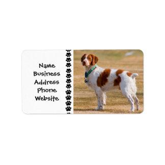 Brittany Spaniel Dog Beautiful Address Label