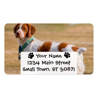 Brittany Spaniel Dog Beautiful Business Card