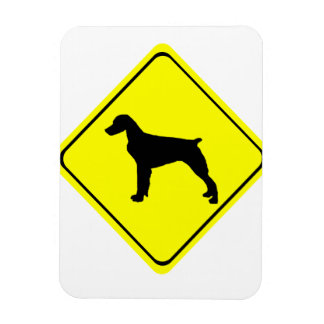 Brittany Spaniel Dog Caution or Crossing Sign Flexible Magnet