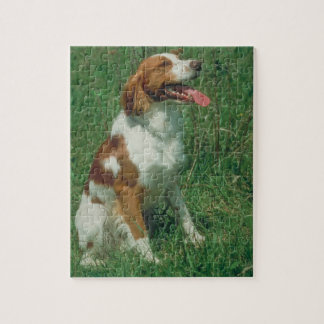 Brittany Spaniel Dog Puzzle