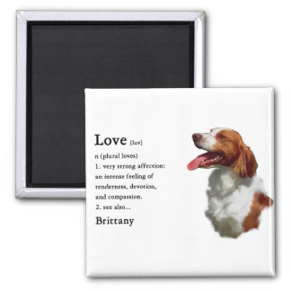Brittany Spaniel Gifts Magnet