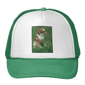 Brittany Spaniel Mesh Hats