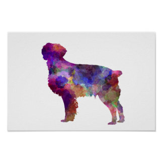 Brittany Spaniel in watercolor Poster