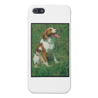 Brittany Spaniel iPhone SE/5/5s Case