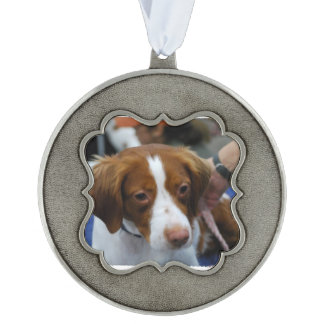 Brittany Spaniel Scalloped Pewter Ornament