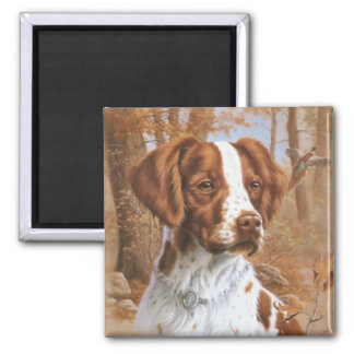 Brittany Spaniel Magnet