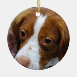Brittany Spaniel Ornament