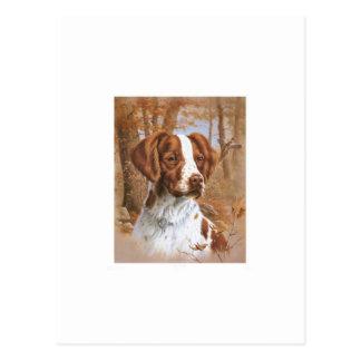 Brittany Spaniel Postcard