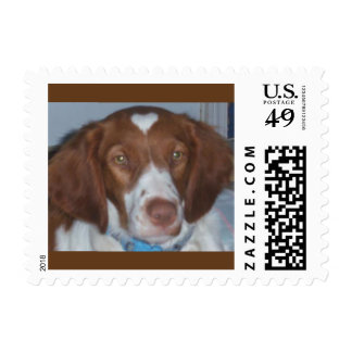BRITTANY SPANIEL, with a heart Postage