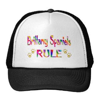 Brittany Spaniels Rule Trucker Hat