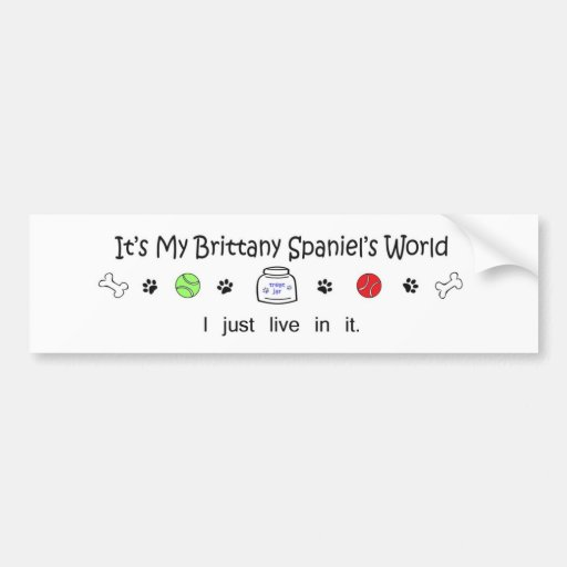 BrittanySpaniel Bumper Sticker