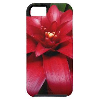 bro iPhone SE/5/5s case