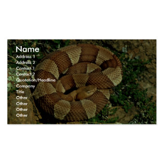 Broad-banded copperhead Double-Sided standard business cards (Pack of 100)