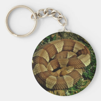 Broad-banded copperhead basic round button keychain