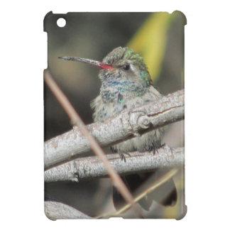 Broad-billed Hummingbird iPad Mini Case
