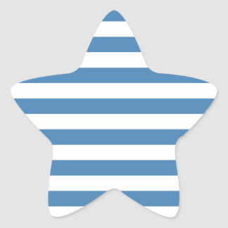 Broad Stripes - White and Steel Blue Star Sticker