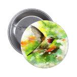 Broad tailed Hummingbird Button