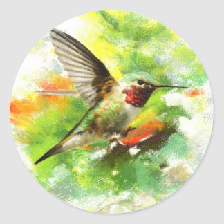 Broad tailed Hummingbird Classic Round Sticker