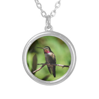 Broad-tailed Hummingbird Round Pendant Necklace