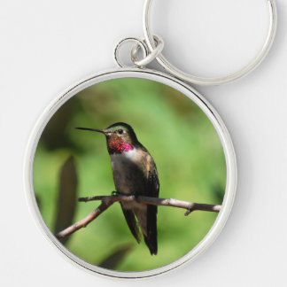 Broad-tailed Hummingbird Silver-Colored Round Keychain