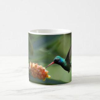 Broadbill Hummingbird In Flight Coffee Mug