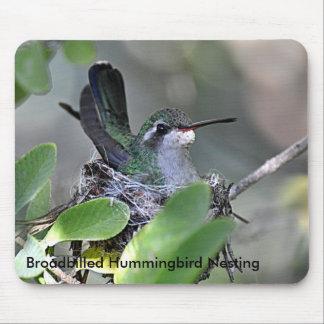 Broadbilled Hummingbird Nesting Mouse Pads
