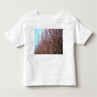Broadford Pear buds Toddler T-shirt