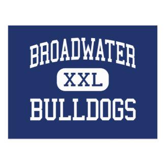 Broadwater - Bulldogs - High - Townsend Montana Postcard