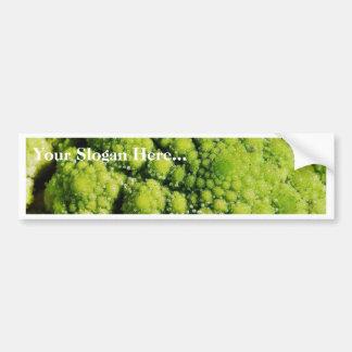 Brocco Flower Vegetable Bumper Sticker