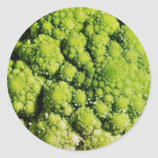 Brocco Flower Vegetable Stickers