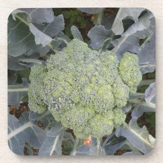 Broccoli Cork Coaster
