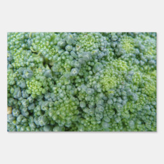 Broccoli Macro Decorative Sign