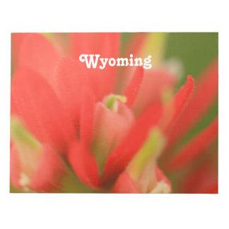 Brocha india de Wyoming Blocs De Papel