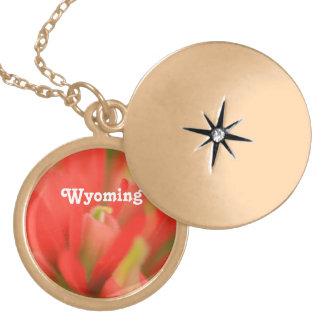 Brocha india de Wyoming Pendiente