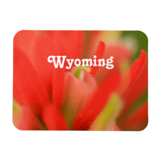 Brocha india de Wyoming Imán Flexible