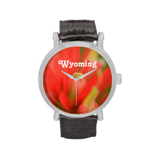 Brocha india de Wyoming Reloj De Mano