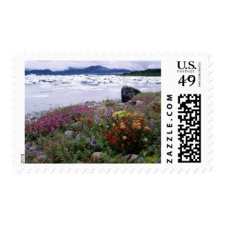 Brocha, Lupine, Fireweed. Icebergs Russell Timbre Postal