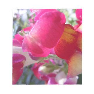 Broches rosadas y blancas bonitas bloc de notas