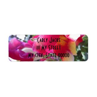 Broches rosadas y blancas bonitas etiquetas de remite