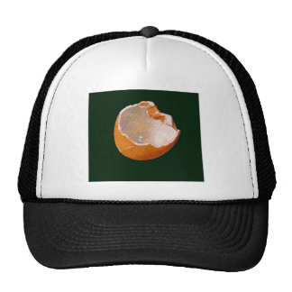 BROKEN EGG SHELL: ART: REALISM TRUCKER HAT