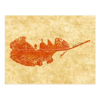 """Broken Leaf #1"" Country Roads Postcard"