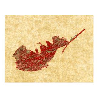 """Broken Leaf #2"" Country Roads Postcard"