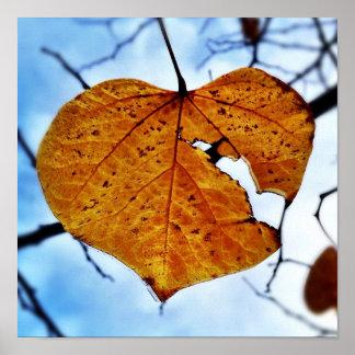 Broken Leaf Broken Heart Poster