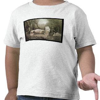 Broken Mayan idol at Copan, Guatemala T-shirt