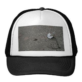 Broken net float on beach mesh hats