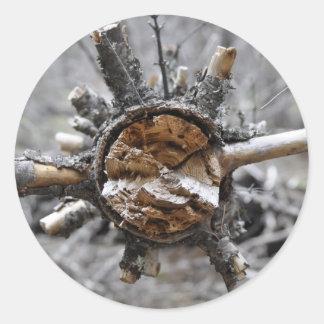 Broken Pine Classic Round Sticker