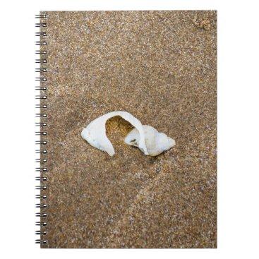 Beach Themed Broken shell notebook