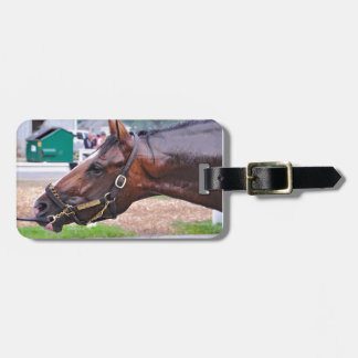 Broken Vow -Copeland's Angel Colt Tags For Luggage