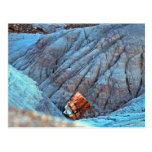 """""""Broken Wood in Blue Canyon"""" collection Post Card"""