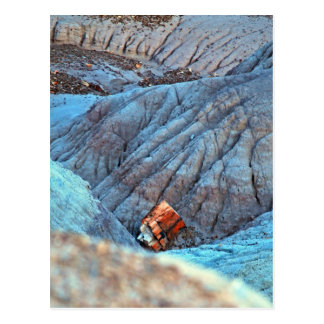 """Broken Wood in Blue Canyon"" collection Postcard"